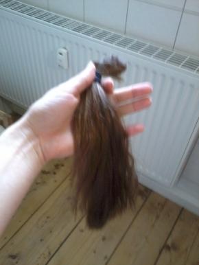 Ende April 2014 die ersten Haare fallen aus