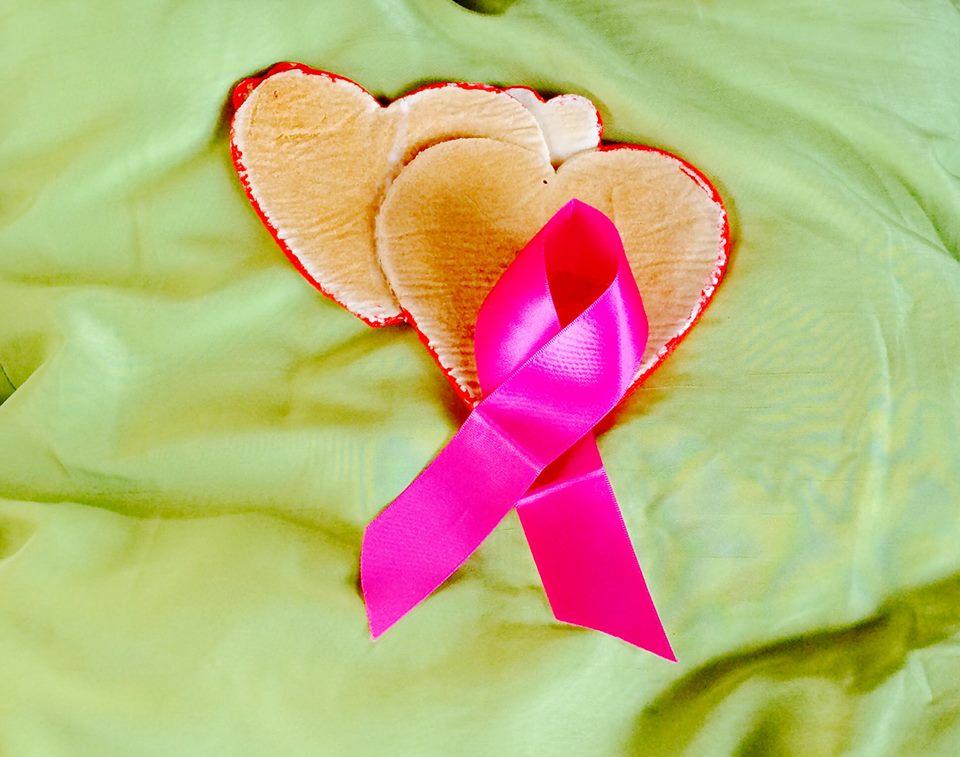 Die Krebsgemeinschaft #1 / The Cancer Community#1